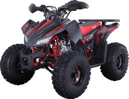 Quadriciclos de vários modelos e cilindradas para adultos e crianças