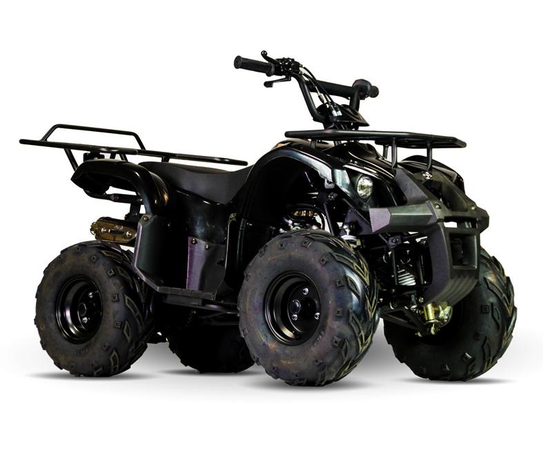 Quadricíclo 110cc Utilitário