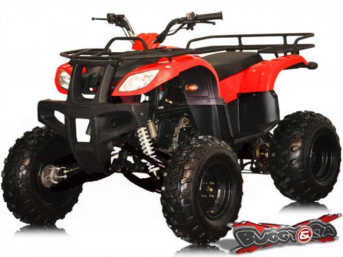 Quadriciclo 150cc STD Utilit�rio