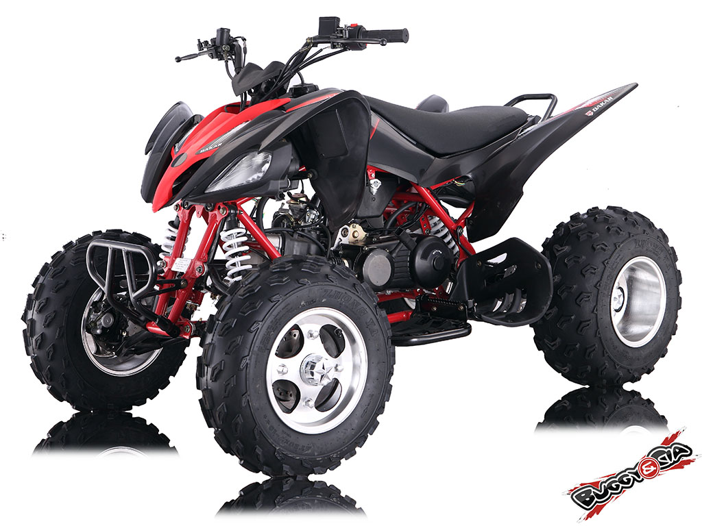 Quadriciclo 150cc X-Raptor